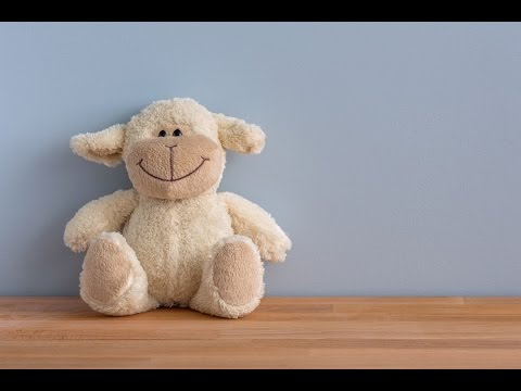 HOW TO MAKE LOVE TO A STUFFED TOY