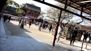 Dazaifu Japan  city pictures gallery : 太宰府天満宮 Dazaifu - Japan 【HD】