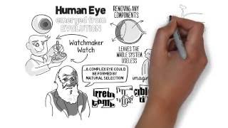 Irreducible Complexity? - Evolution of the Eye Explained