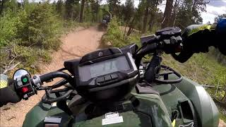 3. 2019 Yamaha Kodiak 700 EPS trail riding on the 717A - part 1