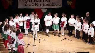 Ziua Națională a României 2014 (Teatro Pileo)
