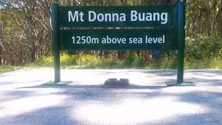 Mount Dandenong Ranges Australia  City new picture : Mt Donna Buang - Yarra Ranges, Victoria, Australia
