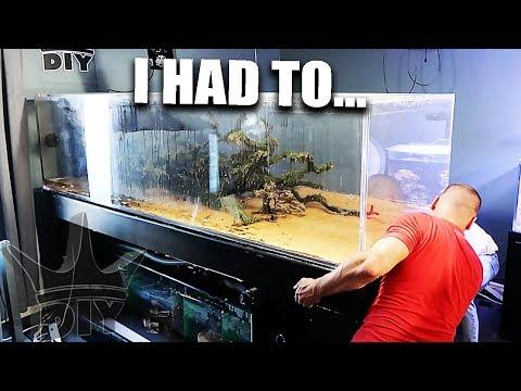 BIG aquarium move