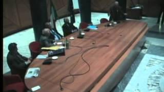 Assemblea ex Parlamentari - Secondo intervento dell\'On. Rende