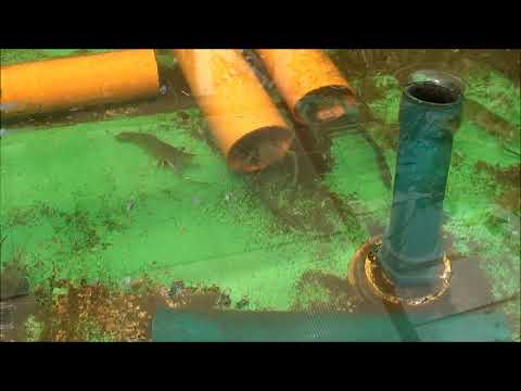 MADE Growing Systems Aquaponics Philippines, May 2012 Update