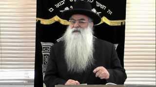 פרשת בחוקותי: למה צריך לעמול בתורה? – הרב רפאל כהן