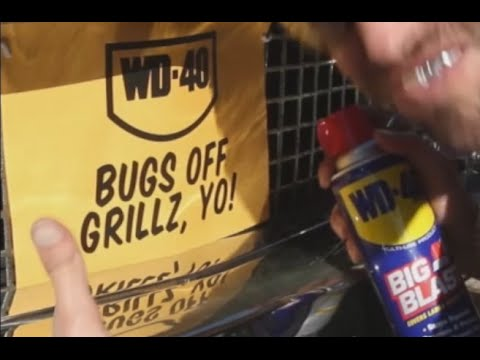WD-40® Removes Bugs from Your Vehicle's Grille