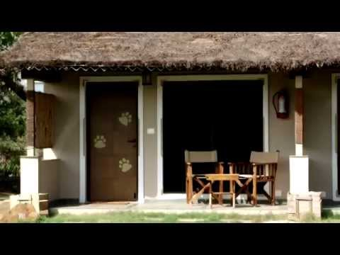 Asiatic Lion Lodge - Sasan Gir Resort and Sasan Gir Hotel