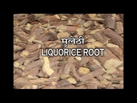 Ayurvedic Benefits of Mulethi for Phora