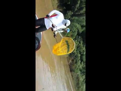 Pescaria em Foz do Igua�u