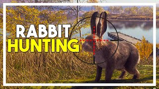 *NEW* Rabbit Hunting Update & 22 Sporter Rifles! - the Hunter: Call of the Wild