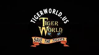 Tiger World Trailer