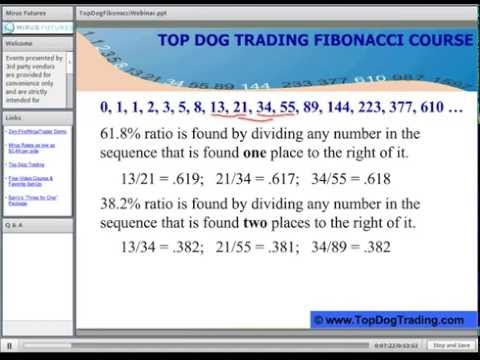 How to use fibonacci levels on your charts