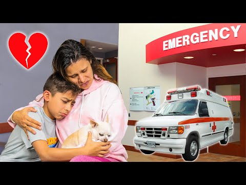 We Rushed to the EMERGENCY ROOM on Vacation 😢 | The Royalty Family