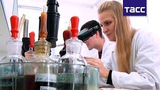 Ученые РФ будут выращивать голубую плесень для сыров в новой лаборатории