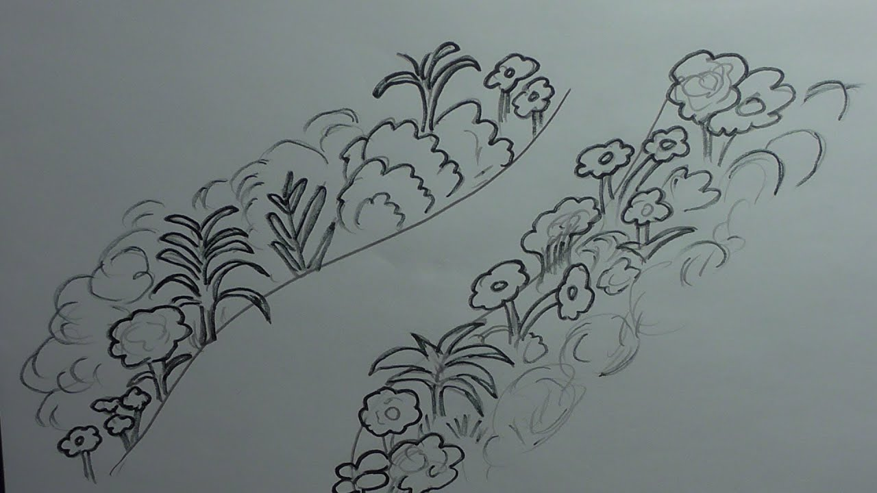 How To Draw A Garden #howtodraw #easy How To Draw A Scenery With Flowers