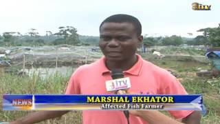 Fishes worth millions of naira have been lost following the flooding at a farm settlement in Ekiuwa, Uteh in Ikpoba Okha Local...