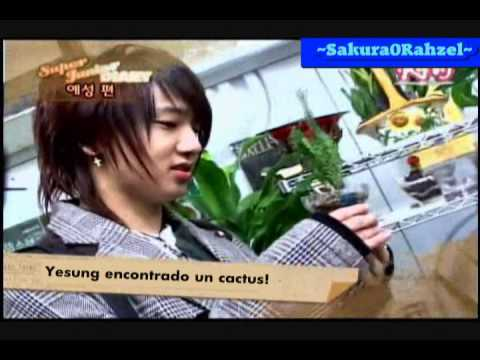 [Sub-Español]Super Junior Show Ep 9 Part 4