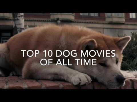 Top 10 Dog Movies of all time