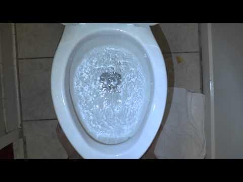 Briggs elongated Bowl Toilet at Days Inn Princeton WV