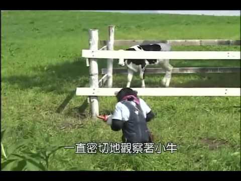 狗狗猩猩大冒險2 Episode 02
