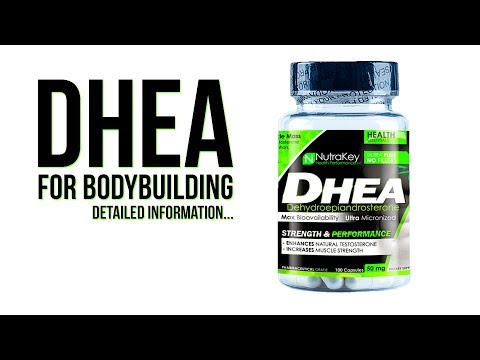 DHEA for Bodybuilding | Detailed Information...