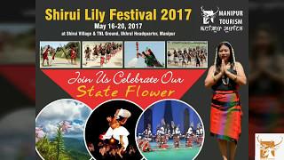 Shirui Lily Festival 2017 Promo