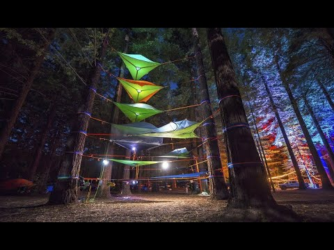 "Camp in the trees : Tentsile ""connect"" tree tent - double hammock"