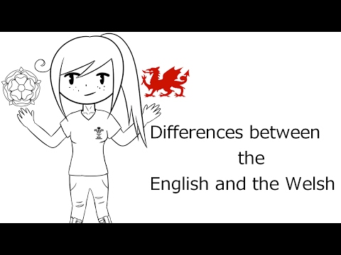 Differences between the english and the welsh lyrics-animatic