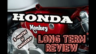 3. 2019 Honda Monkey - Long Term Review