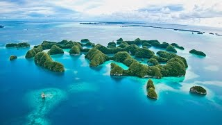Do you want to dive Palau? Check out this introduction about diving Palau with Palau Dive Adventures.