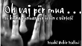 Oh vaj për mua të kisha punuar për jetën e vërtetë - Hoxhë Bekir Halimi