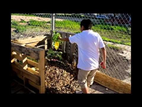 Learn Secrets Tips & Techniques Organic Gardening Vegetables
