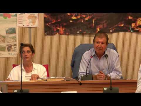 Consiglio Comunale del 01-08-2016