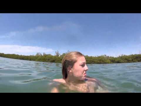 بالفيديو.. رد فعل فتاة شاهدت كلب البحر يسبح بجانبها