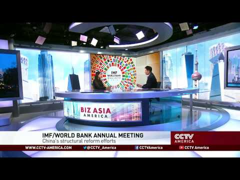 economic slowdown - The International Monetary Fund and the World Bank are holding their annual meetings in Washington, D.C. this week. The World Bank has already been weighing ...