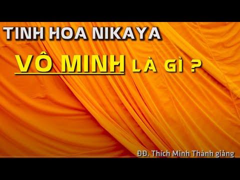 Tinh Hoa NIKAYA - Vô Minh Là Gì ?