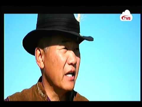 """Махны чиглэлийн """"Герефорд"""" үүлдрийн үхрийг Монгол оронд нутагшуулсан нь"""