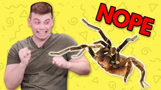 SUBSCRIBE ►►http://smo.sh/SubscribeSmoshGames PUNISHMENT SHOOTOUT ►► http://smo.sh/SSG-PunishmentShootoutThis was TOO funny pranking Joven with the giant spider!What're Those!? is a WTF unboxing show in which we bring in crazy products from all over the world for the cast to try out!CASTIan Hecox @SmoshIanWes Johnson @Wes_IRLDavid Moss @LaserCornJoshua Ovenshire @TheJovenshireAmRa Ricketts @FLitzMatt Sohinki @SohinkiMari Takahashi @atomicmariBoze @bigbossbozeLily Marston @lily_marstonMatt Raub @mattraubCREWDirected by: Matt RaubProduced by Alex Hluch & Matt RaubSmosh Co-Founded by Ian Hecox & Anthony PadillaSmosh Games Creative Director: Matt RaubLead Producer: Alex HluchFirst Assistant Director: Andy GarwigAssociate Producer: Rebecca DoyleAssociate Producer: Garrett PalmPA: Ren Holly LiuDirector of Photography: Billy YatesCamera Op: Nick GotoCamera Op: John O'ConnorSound: Greg JonesDIT/Media Management: Tim BakerPost-Production Supervisor: Brett NoborikawaEditor: Assistant Editor: Lee Wilson Play with us!Subscribe: http://smo.sh/SubscribeSmoshGamesStream: http://twitch.tv/SmoshGamesLike us on Facebook: http://facebook.com/SmoshGames Follow us on Twitter: http://twitter.com/SmoshGamesAdd us to your circles on Google+: http://google.com/+SmoshGames