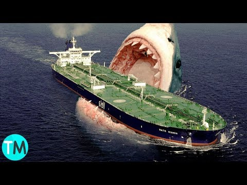 El Tiburón Más Grande Del Mundo: MEGALODÓN