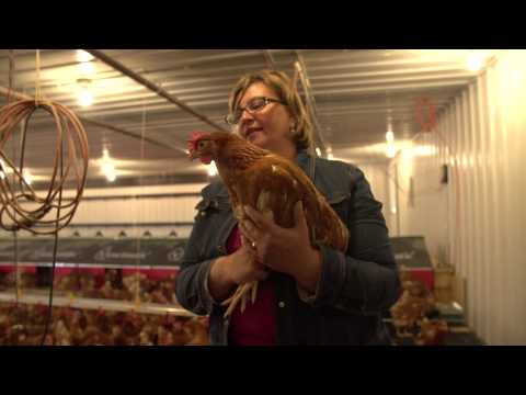 Meet Egg Farmer Susan.