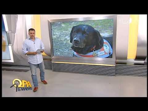 Η ελληνική Πράγα… η σκυλίτσα Λάρα και η επανάσταση που δεν θα μεταδοθεί | 01/04/19 | ΕΡΤ