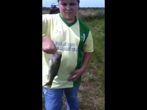 Pond bass fishing part 2