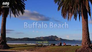 Coromandel New Zealand  city images : Best Beaches Of The Coromandel, New Zealand