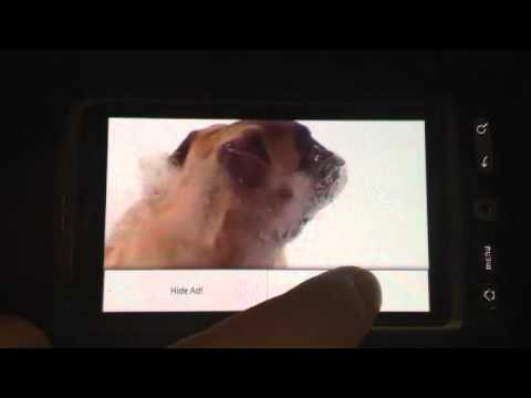 Video of Dog screen cleaner