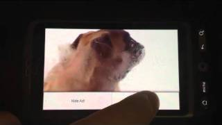 Dog screen cleaner YouTube video