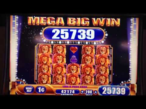 WMS- KING of AFRICA slot machine MAX BET - MEGA BIG WIN