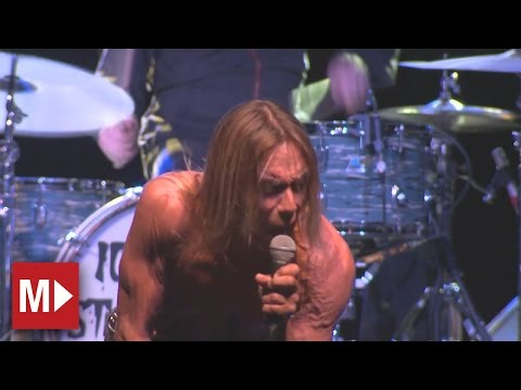 Iggy and the Stooges | Johanna | Live in Sydney