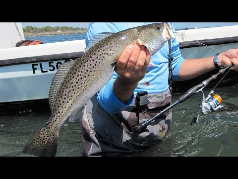 3 monster Speckled Trout – Addictive Fishing