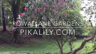 Exploring Rowallane Gardens
